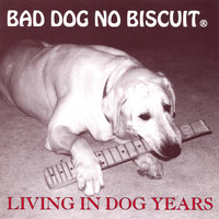 Living in Dog Years — Bad Dog No Biscuit