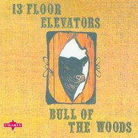 Bull Of The Woods — The 13th Floor Elevators