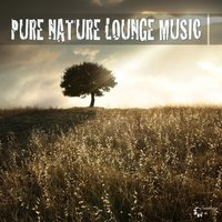 Pure Nature Lounge Music — сборник