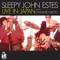 Live in Japan with Hammie Nixon — Sleepy John Estes