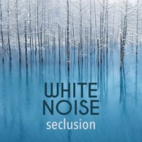 White Noise: Seclusion — Sounds of Nature White Noise for Mindfulness Meditation and Relaxation, White Noise Therapy, White Noise for Sleep and Rest, White Noise Therapy|Sounds of Nature White Noise for Mindfulness Meditation and Relaxation|White Noise for Sleep and Rest