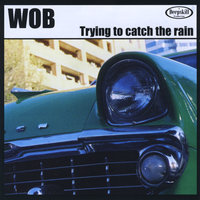 Trying to Catch the Rain — Wob