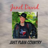 Just Plain Country — Janet David