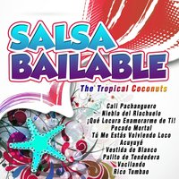 Salsa Bailable — The Tropical Coconuts