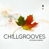 Chillgrooves, Vol.1 — сборник