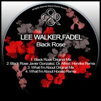 Black Rose — Lee Walker