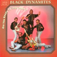 Are You Ready to Indo Rock — Black Dynamites, The Black Dynamites