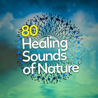 80 Healing Sounds of Nature: Deep Sleep, Relaxation Nature, Mindfulness, Zen Meditation, Peace — сборник