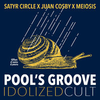 Pool's Groove - Single — Meiosis, Juan Cosby, Satyr Circle feat. Juan Cosby, Meiosis, Satyr Circle