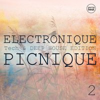 Electronique Picnique, Vol. 2 — сборник
