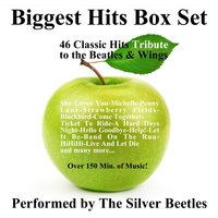 Biggest Hits Box Set — The Silver Beetles