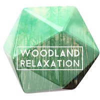 Woodland Relaxation — Relaxing With Sounds of Nature and Spa Music Natural White Noise Sound Therapy, Sondios de la Naturaleza Relax, Tranquil Music Sounds of Nature, Relaxing With Sounds of Nature and Spa Music Natural White Noise Sound Therapy|Sondios de la Naturaleza Relax|Tranquil Music Sounds of Nature