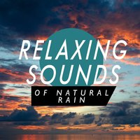 Relaxing Sounds of Natural Rain — Relaxing Sounds of Nature, Ambient Rain, Thunderstorms, Ambient Rain|Relaxing Sounds of Nature|Thunderstorms