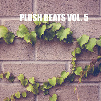 Plush beats Vol. 5 — Frank Envoy