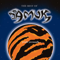 The Best Of — Amuk