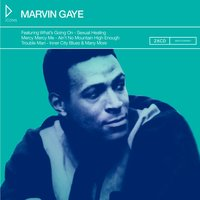Icons: Marvin Gaye — Marvin Gaye