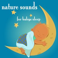 Nature Sounds For Baby's Sleep — Relax & Sleep Moods