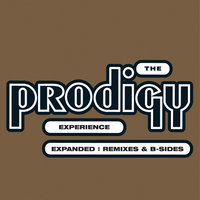 Experience: Expanded — The Prodigy