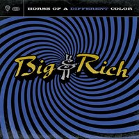 Horse Of A Different Color — Big & Rich