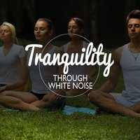 Tranquility Through White Noise — White Noise Research