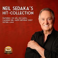 Neil Sedaka's Hit – Collection — Sedaka