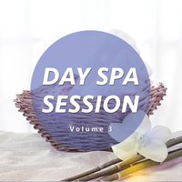Day Spa Session, Vol. 3 — сборник