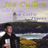 Old Dogs And Celtic Tigers — Joe Cullen