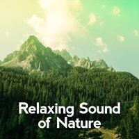 Relaxing Sound of Nature — Relaxing Sounds of Nature