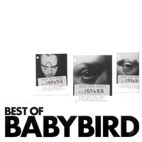 Best of Babybird — Babybird