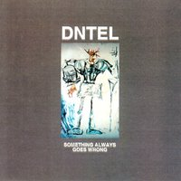 Something Always Goes Wrong — Dntel