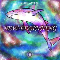 New Beginning — Shark Attack