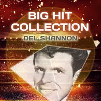 Big Hit Collection — Del Shannon