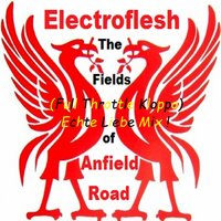 The Fields of Anfield Road — Electroflesh