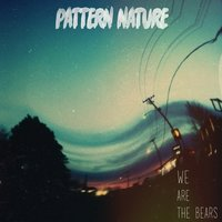 Pattern Nature — We Are The Bears