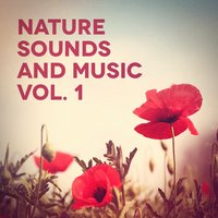 Nature Sounds and Music, Vol. 1 — Nature