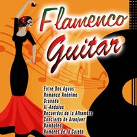Flamenco Guitar — сборник