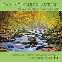 Calming Mountain Stream (Brings You Relaxation and Sleep) — Ryan Judd
