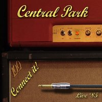 Connect It! — Central Park