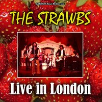 Live In London — The Strawbs