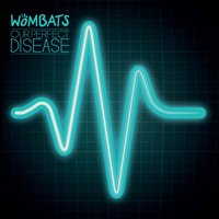 Our Perfect Disease — The Wombats