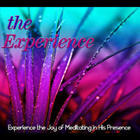 The Experience: Experiencing the Joy of Meditating in His Presence — Identity Network