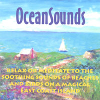 Ocean Sounds — Perry Rotwein