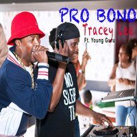 Pro Bono (feat. Young Guru) — Tracey Lee, Young Guru