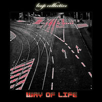 Way of life — Loop Collective