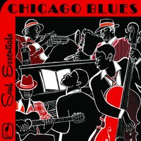 Soul Essentials the Best of Chicago Blues: Classic Blues by Muddy Waters, John Lee Hooker, Buddy Guy, Howlin' Wolf, Koko Taylor & More! — сборник