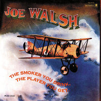 The Smoker You Drink, The Player You Get — Joe Walsh