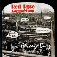 Chicago Buzz — Red Rose Ragtime Band
