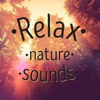 Relax: Nature Sounds — Rest & Relax Nature Sounds Artists