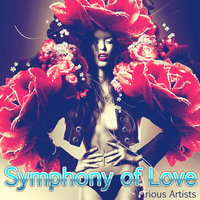 Symphony of Love — The Brothers Four
