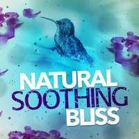 Natural Soothing Bliss — Nature Moods